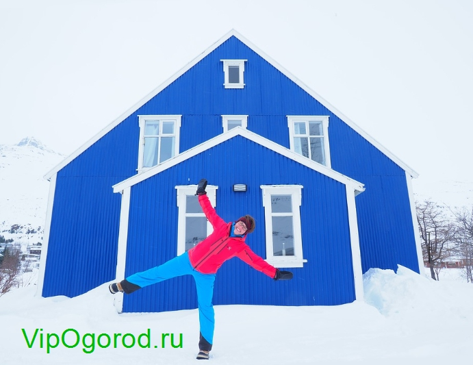 развлекаемся на даче зимой