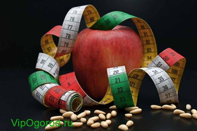 Почему нужно есть орехи и сколько в день можно для похудения