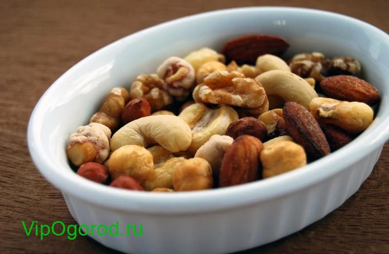 Почему нужно есть орехи и сколько в день можно