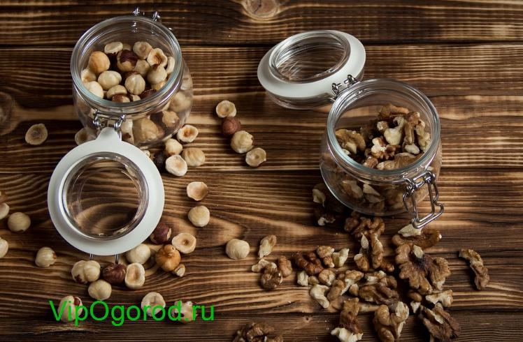 Почему нужно есть орехи