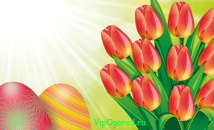 Цветы на пасхальном столе