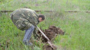 Как избавиться от кротов на участке при помощи лопаты