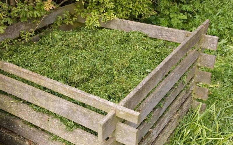 куда девать скошенную газонную траву на даче