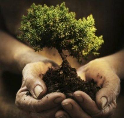 Как отмыть и очистить руки от грязи после огорода