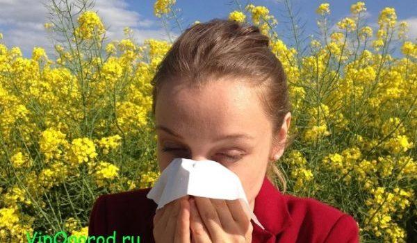 Календарь пыльцы руководство для аллергиков проверьте какие растения пылятся в следующие месяцы