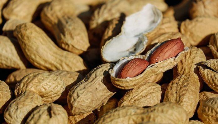Как выращивать арахис в домашних условиях