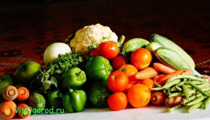 Коронавирус и еда из Китая