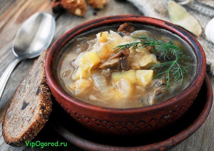Постные блюда щи из квашеной капусты с грибами – рецепт