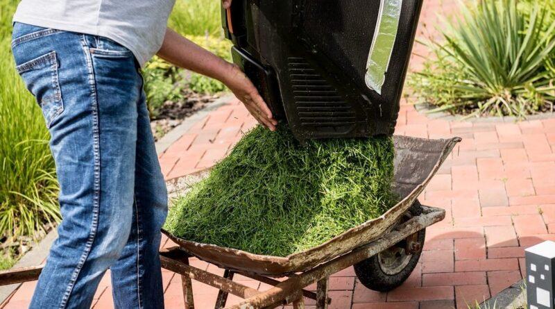 куда девать скошенную газоную траву на даче